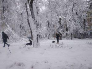 Провести общереспубликанский субботник для борьбы с последствиями снегопада